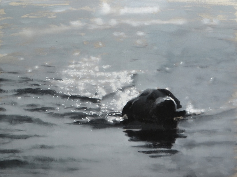 Dog in Water – on paper