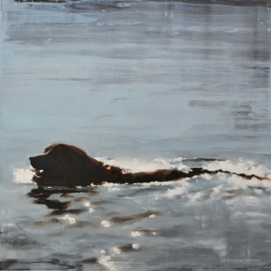 dog_swim_stick_50x50