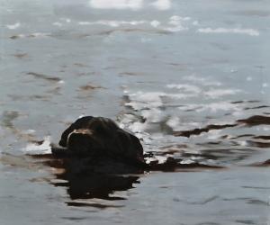 dog retrieving stick - Oil on Panel - 50 x 60cm