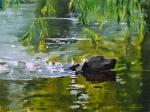 dog_swimming_with_stick_60x80