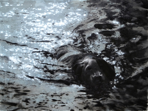 dog with stick in dark water,    Oil on paper 57x76cm